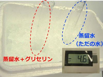 20140121_takahashi_7.jpg