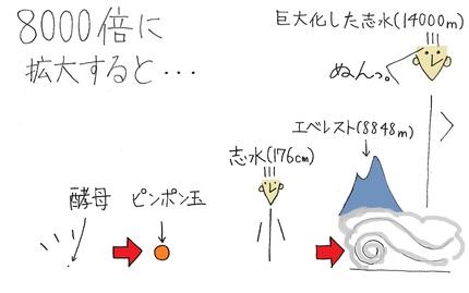 20140620_shimizu_03.jpg
