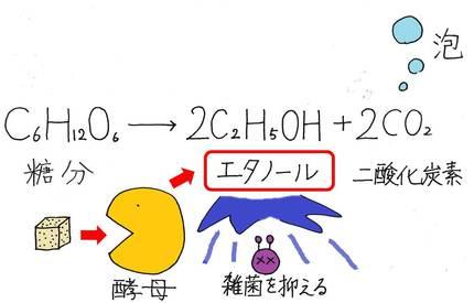 20140709_shimizu_03_3.jpg