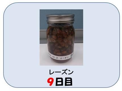 20140709_shimizu_08_2.jpg