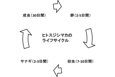 20140915_takeda_04.png