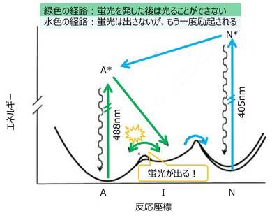20141008Takahashi02.jpg