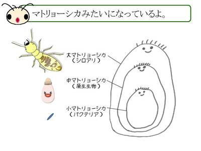 20150123_ohbuchi02_マトリョーシカ.jpg