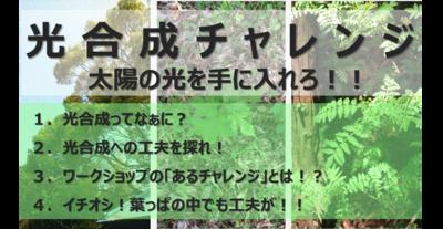 0612_takahashi_1.png