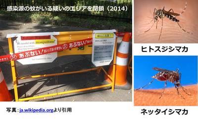 20150802_nishioka_05.jpg