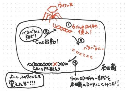 0909suzuki_1.jpg