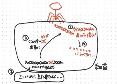 0909suzuki_2.jpgのサムネイル画像
