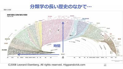 20151114_nishioka_07.jpg