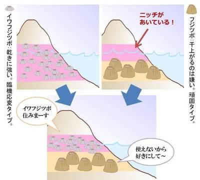 20160820kumagai05.jpg