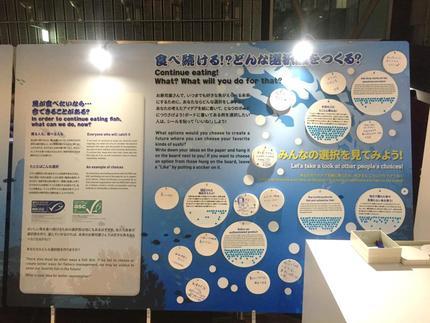 20171204_tanaka_8.JPG