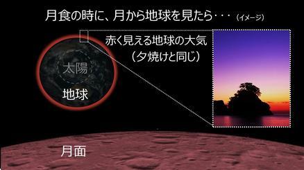 20180111_tani01.jpg