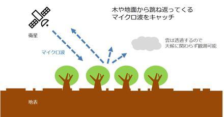 20181023_katahira_07.jpg