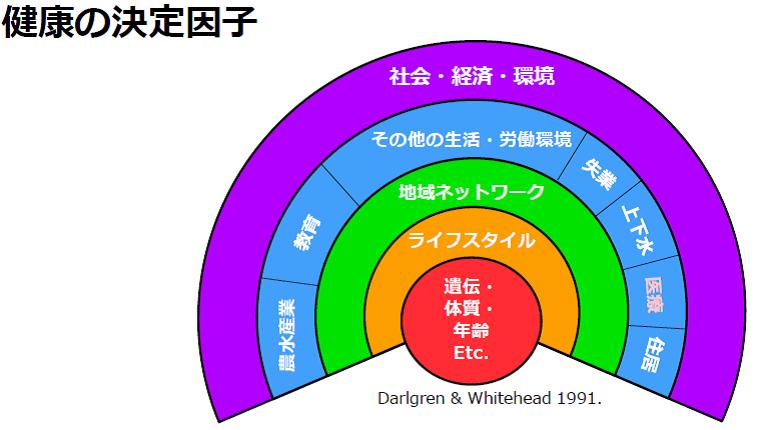 https://blog.miraikan.jst.go.jp/images/160711%20niiyama_2_06.png