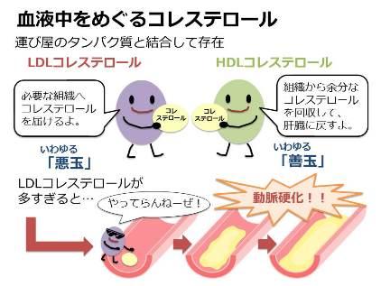 170910_hamaguchi_01.JPG