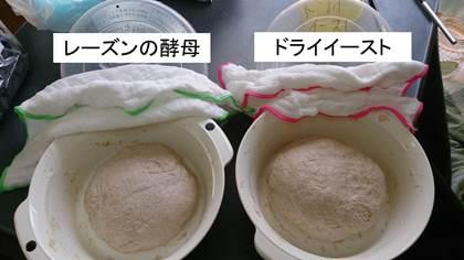 20140728_shimizu_02.jpg