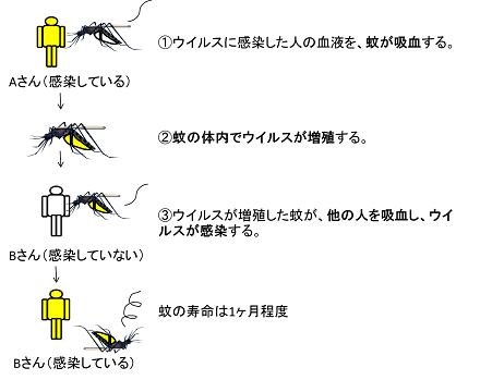 20140915_takeda_01.png