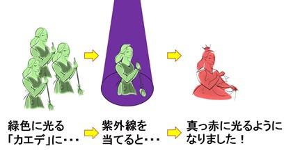 20141025_shimizu_03.jpg
