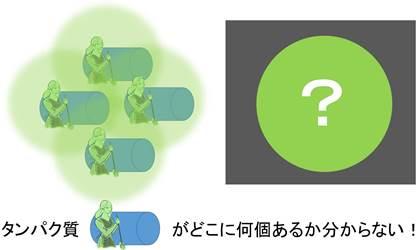 20141025_shimizu_04.jpg