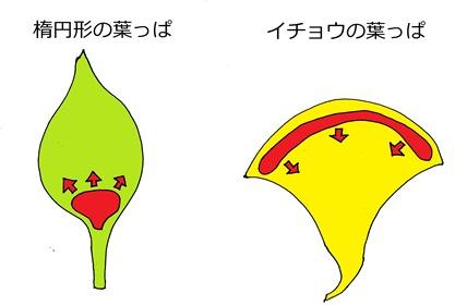 20141111_shimizu05.jpg