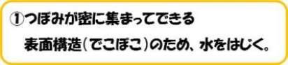 20141218_shimizu_02.jpg