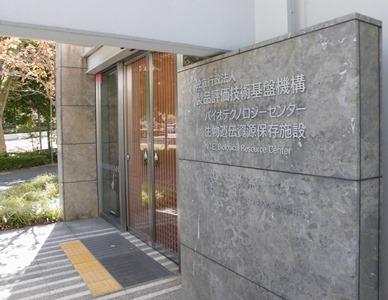 20151210_shimizu_02.JPG