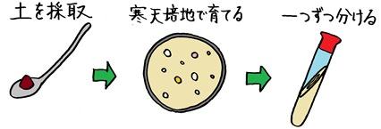 20151210_shimizu_04.JPG