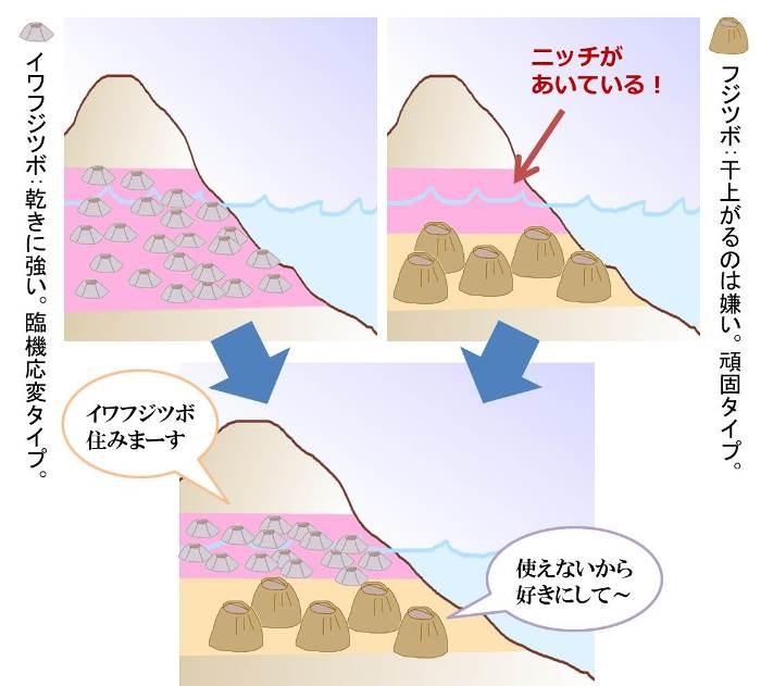 http://blog.miraikan.jst.go.jp/images/20160820kumagai05.jpg