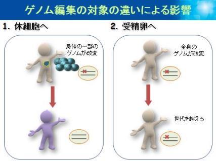20160823_hamaguchi_04.jpg