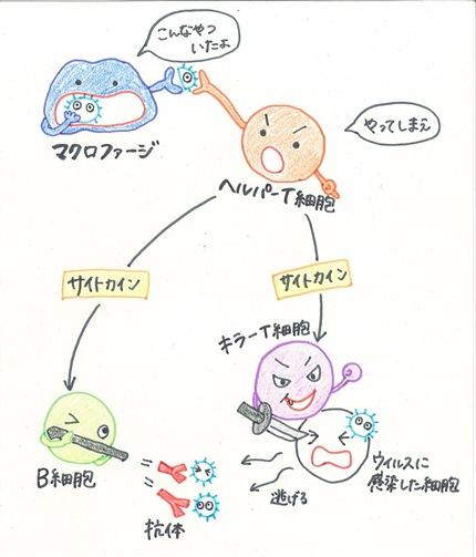 20160905_ishida_02.jpg