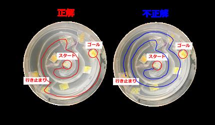20161028_ishida_05.png
