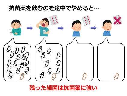 20161223_yamamoto_04.jpg