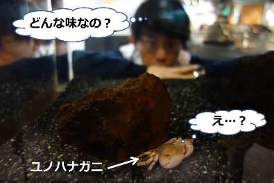 20170302_kajii_01.jpg