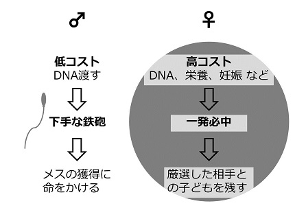 20170915_yamamoto_07.jpg