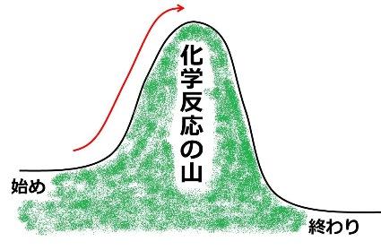 20170927_kajii_04.jpg