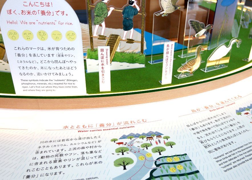 http://blog.miraikan.jst.go.jp/images/20171121_tani10.jpg