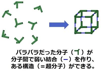 20180220_kajii_02.jpg