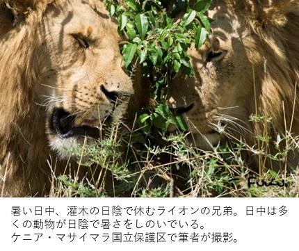 20180714-2fukui.jpg