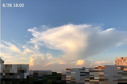 20180901_tsuboi_07.png