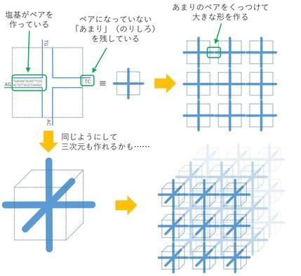 20180902_t2-suzuki_03.jpg