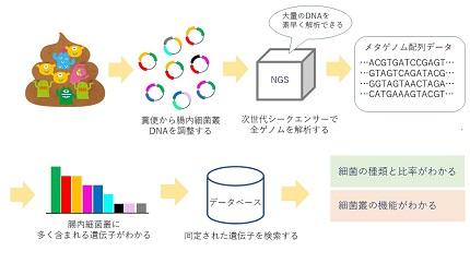 20180913_yamakawa_02.jpg