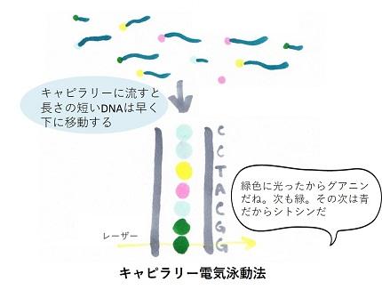 20180926moriwaki_07.jpg