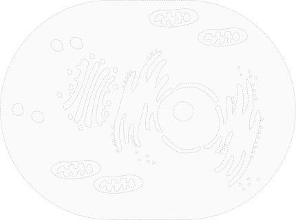 20181024_tanakas_03.jpg