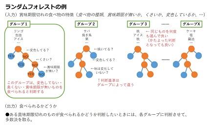 20181101_t2-suzuki_04.jpg