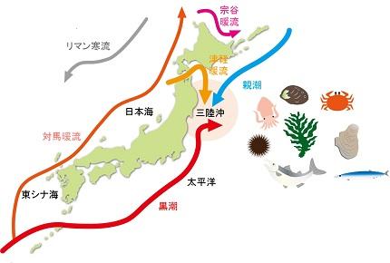 その1「東北の海のおいしいヒミツ~豊かな海の源と津波のはなし」