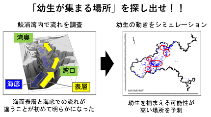 20190106nakajima_05.png