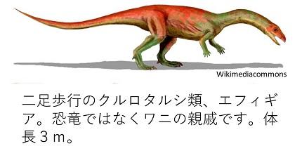 20190107fukui-2.jpg