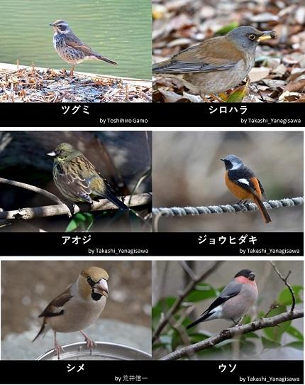 20191227_munakata_09.jpg