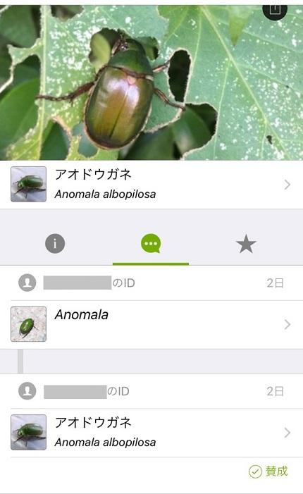 20191227_munakata_14.jpg